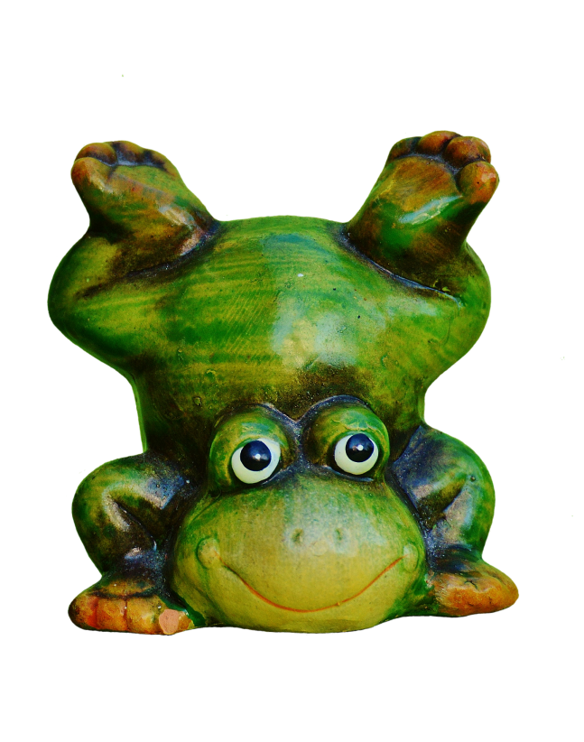 frog-2581635_1920.png